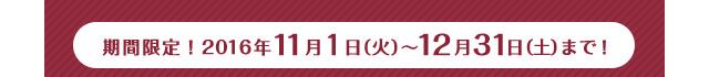 期間限定!2016年11月1日(火)〜12月31日(土)まで!