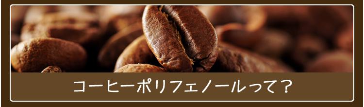 コーヒーポリフェノールって?